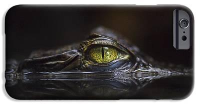 Alligator IPhone 6s Cases