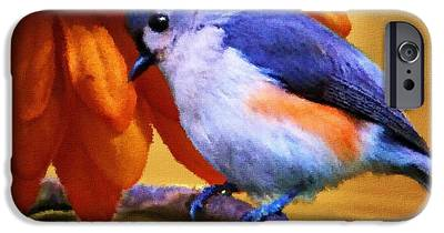 Titmouse IPhone 6s Cases
