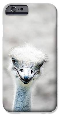 Ostrich iPhone 6s Cases