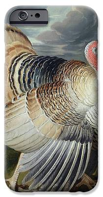 Turkey iPhone 6s Cases