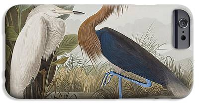 Egret iPhone 6s Cases