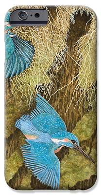 Kingfisher iPhone 6s Cases