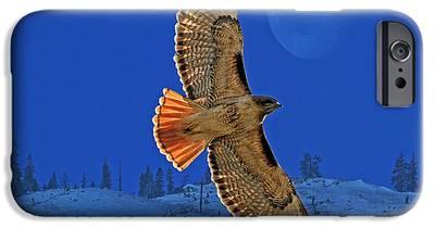 Hawk iPhone 6s Cases