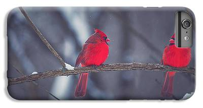 Cardinal iPhone 6s Plus Cases