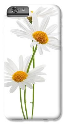 Daisies iPhone 6s Plus Cases