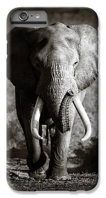 Bull iPhone 6s Plus Cases