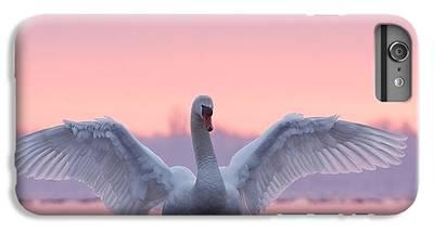Swan iPhone 6s Plus Cases
