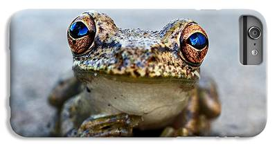 Frogs iPhone 6s Plus Cases