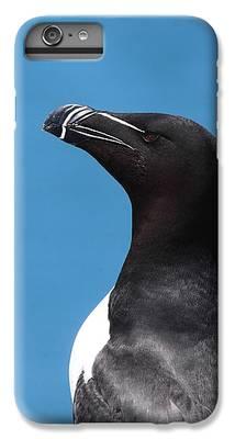 Razorbill IPhone 6s Plus Cases