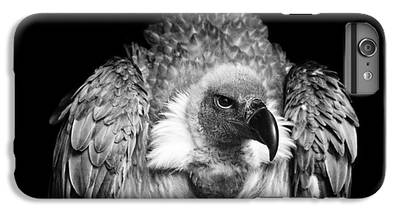 Vulture IPhone 6s Plus Cases