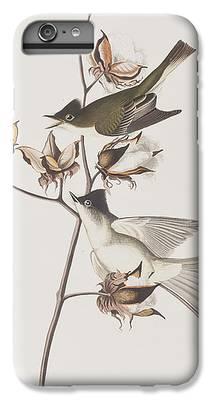 Flycatcher iPhone 6s Plus Cases