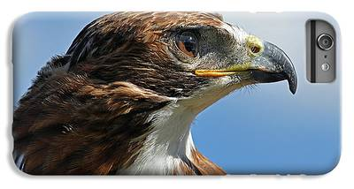 Hawk IPhone 6s Plus Cases