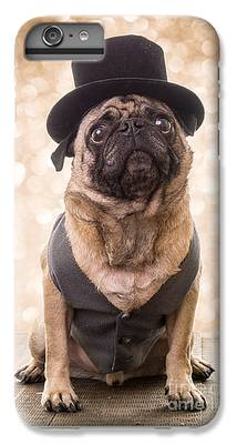 Pug IPhone 6s Plus Cases