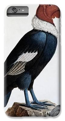 Condor iPhone 6s Plus Cases