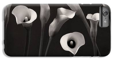 Lily IPhone 6s Plus Cases