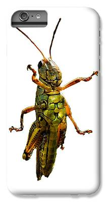Grasshopper iPhone 6s Plus Cases