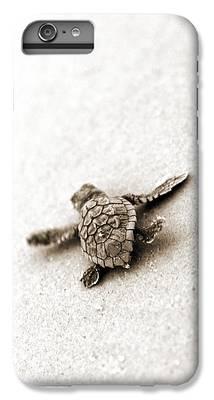 Turtle iPhone 6s Plus Cases