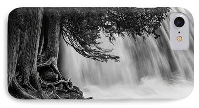 Rooted In Spring Cedar Trees Roots Spring Melt Gooseberry Falls Waterfall iPhone Cases