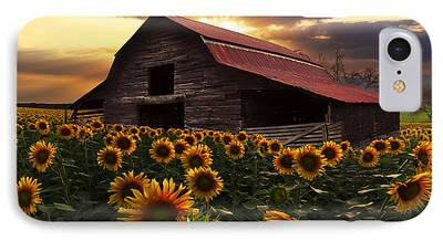 Red Roofed Barn iPhone Cases