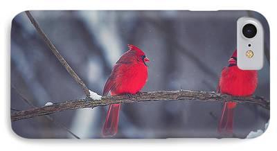 Cardinal iPhone Cases