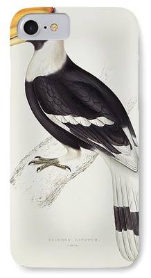 Hornbill iPhone Cases