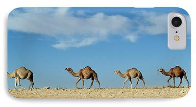Camel Photographs iPhone Cases