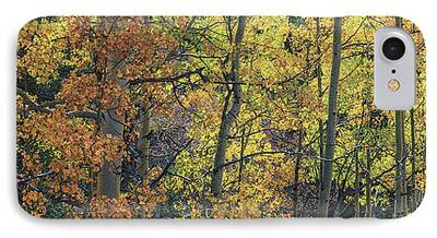 Colorful Colorado Turning Aspens Mountain Landscape Scene iPhone Cases