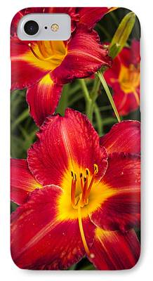 Anthers iPhone Cases