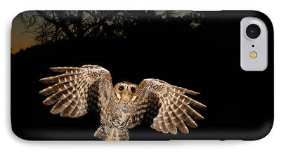 Birds In Flight At Night iPhone Cases