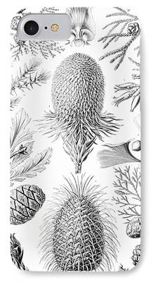 Fauna Drawings iPhone Cases