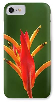 Paradise. Flower Photographs iPhone Cases