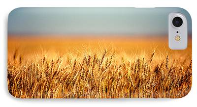 Wheat iPhone Cases