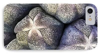 Botanic Illustration Photographs iPhone Cases
