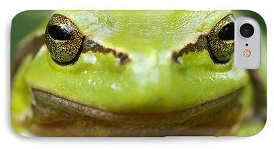 Frogs Photographs iPhone Cases