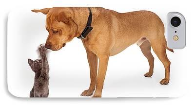 Mixed Labrador Retriever Photographs iPhone Cases