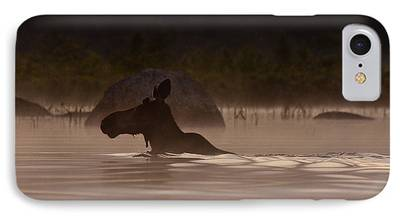 Maine Landscapes iPhone Cases