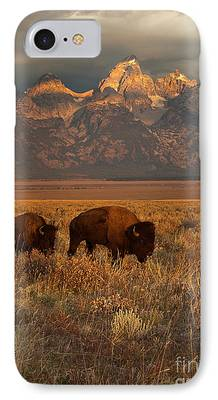 Bison Photographs iPhone Cases