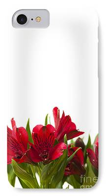Day Lilies iPhone Cases