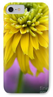 Abstracted Coneflowers iPhone Cases