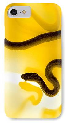 Reptile IPhone 7 Cases
