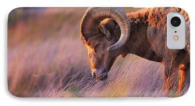 Goat iPhone 7 Cases