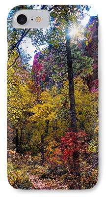 West Fork Mixed Media iPhone Cases