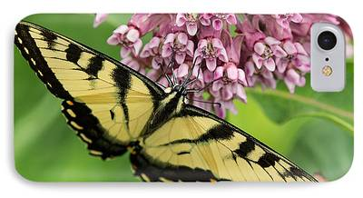 Tiger Swallowtail Butterfly iPhone Cases