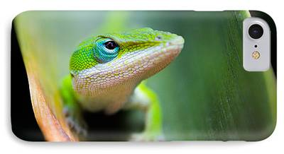 Lizard iPhone Cases