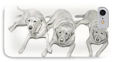 Mixed Labrador Retriever iPhone Cases