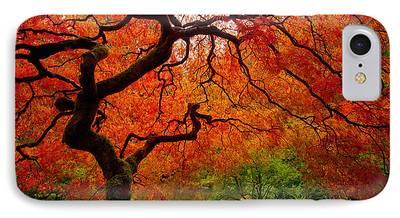 Reds Of Autumn iPhone Cases