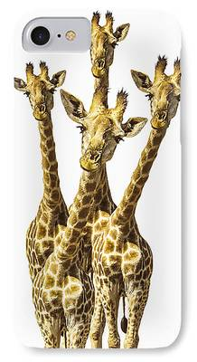 Animals And Earth iPhone Cases