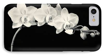 Phalaenopsis iPhone Cases