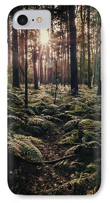 Forest Floor Photographs iPhone Cases