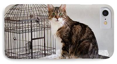 Bird Cages iPhone Cases